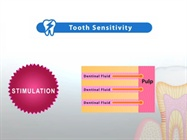Product Overview: Teethmate Desensitizer